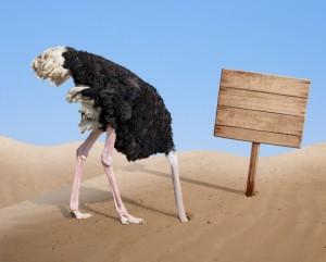 ostrich policy